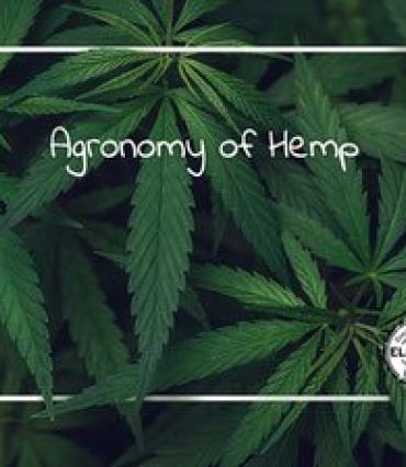 A photo of cannabis leaves with the handwritten words Agronomy of Hemp overlaid.